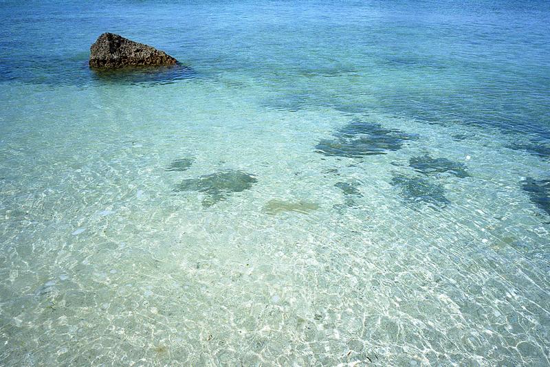 石垣の透き通った海