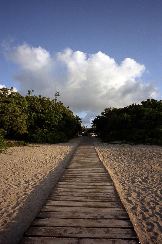 砂浜の入り口