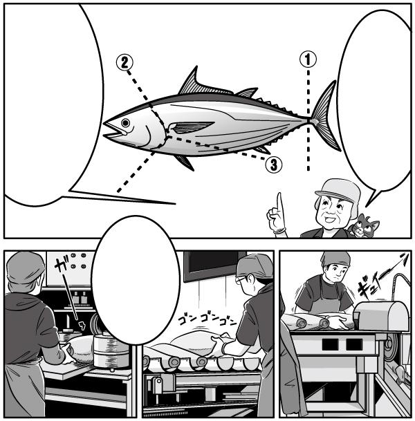 漫画本文、カツオの解体作業について説明しているシーンのイラスト。