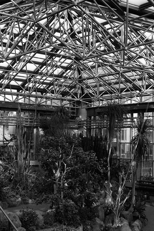 ガラス張り温室の天井